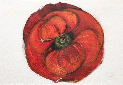 Poppy, Watercolor And Pastel On Handmade Paper, 25x10 Cm, 2015