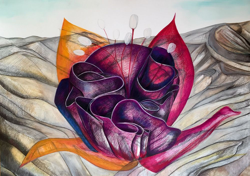 Flower Of The Valley, Colored Pencil Dry Pastel Ink On Paper, 100x70 Cm, 2015
