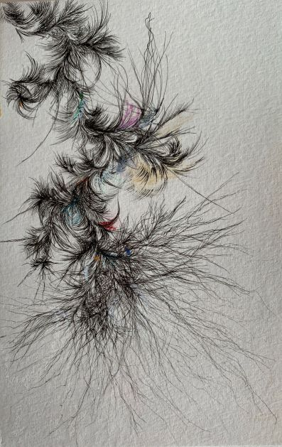 Abstract Root, pigmented ink pen, dry pastel on paper14x21.6 cm-